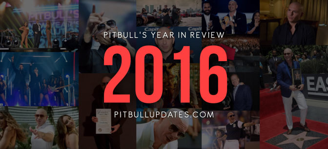Pitbull's Year in Review — 2016 Edition