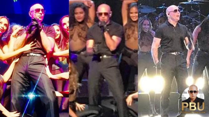 Pitbull Performs at Nickelodeon Upfront 2017